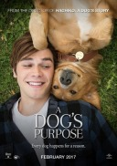 dogs_purpose_ver12_zpsvcjjdbju