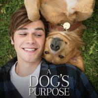 dogs_purpose_ver12_zpsvcjjdbju