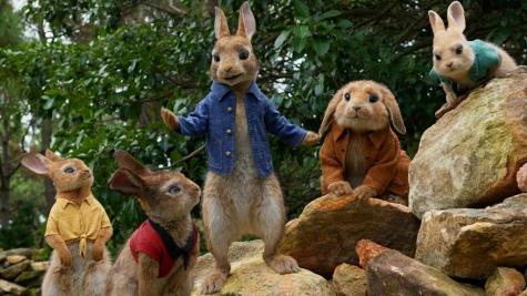 peter_rabbit2018_feature